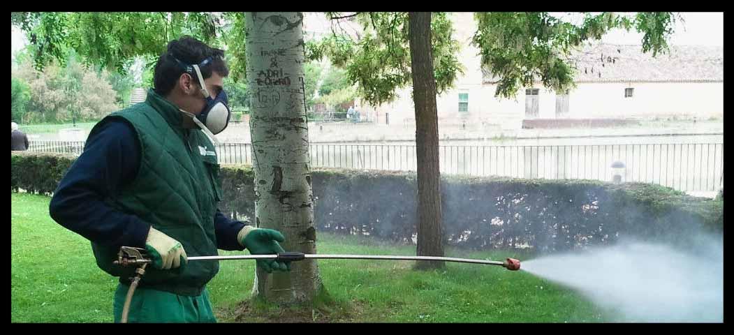 higiene ambiental en control de plagas