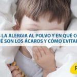 ¿Qué es la alergia al polvo y en qué consiste? ¿Qué son los ácaros y cómo evitarlos?